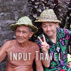 input travel